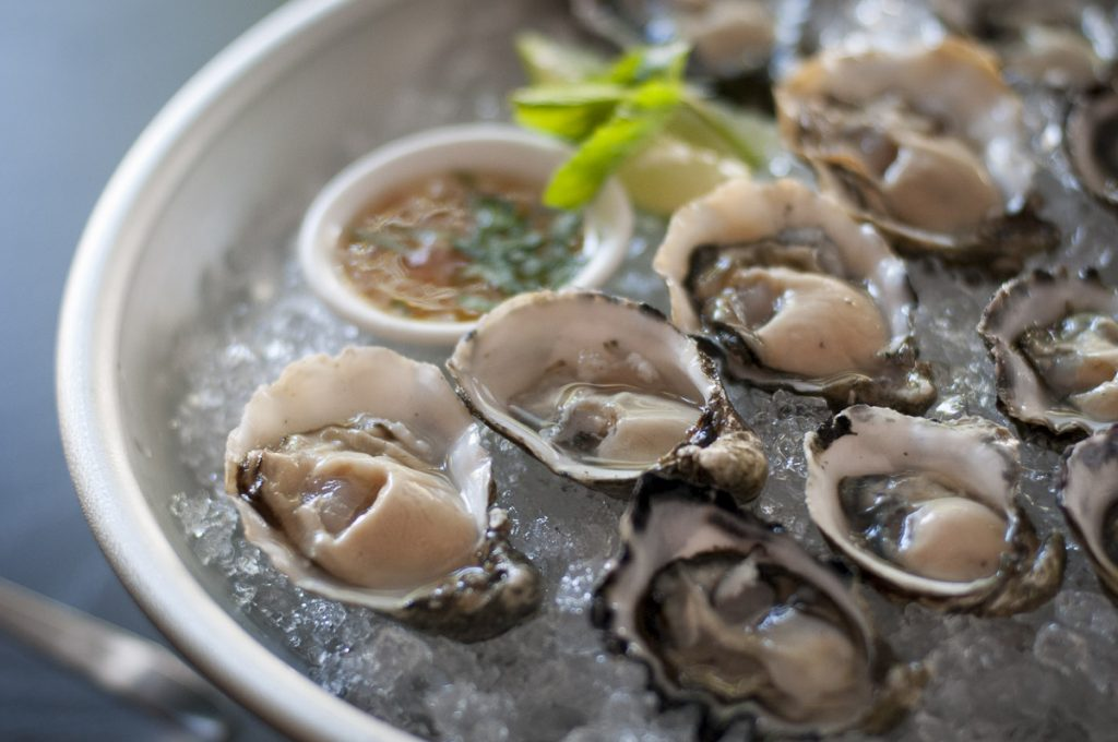 Photo of Oysters